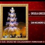 L'albero di San Nicandro al tg2