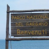 PD Gargano, circoli si compattano su presidenza Parco
