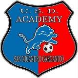 L' Academy Sannicandro  giocherà in  Seconda Categoria