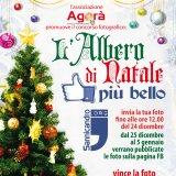 Sannicandro.org premia l'Albero di Natale più bello della città
