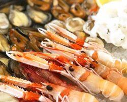 RODI GARGANICO – Sagra del pesce il 29 e 30 Agosto