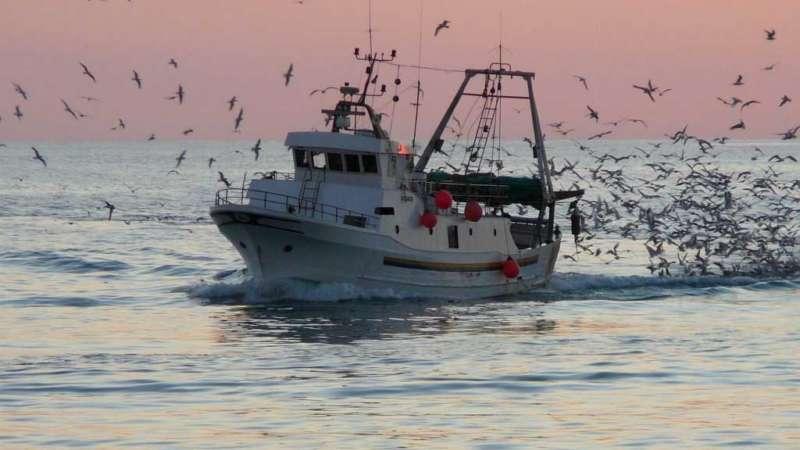 PESCAMIA, la nuova app che mette in contatto pescatori e ristoratori