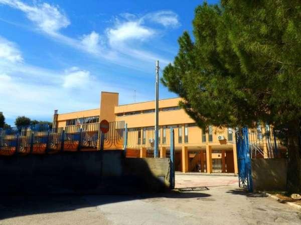 """RODI GARGANICO: Istituto """"Mauro del Giudice"""" Nuova attivazione DIPLOMA TECNICO ECONOMICO AFM articolazione SIA (Servizi Informativi Aziendali)"""