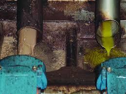 CARPINO: sversano acque reflue, denunciati  titolare e autista di azienda olearia di Carpino