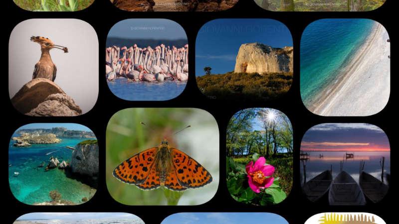 Giornata Mondiale dell'Ambiente, il Parco compie 25 anni